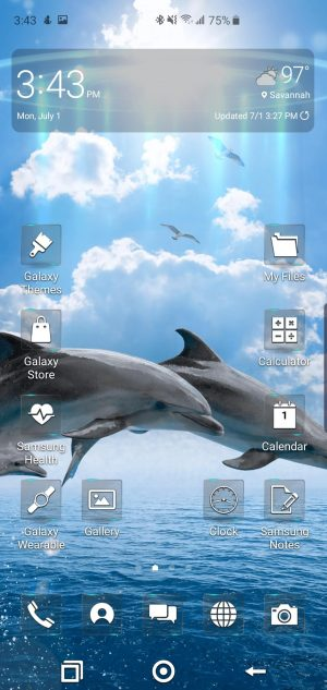 Flip Out Dolphin Theme for Samsung Galaxy S10 and Galaxy Note 10